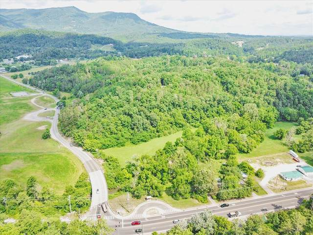 Waldens Creek Rd, Pigeon Forge, TN 37863 (#243331) :: The Terrell-Drager Team