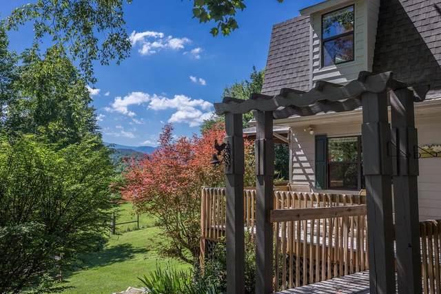 208 Rudd Hollow Rd, Townsend, TN 37882 (#243353) :: Prime Mountain Properties