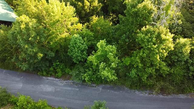 Lot 29 Silver Stone Lane, Pigeon Forge, TN 37864 (#243356) :: Prime Mountain Properties