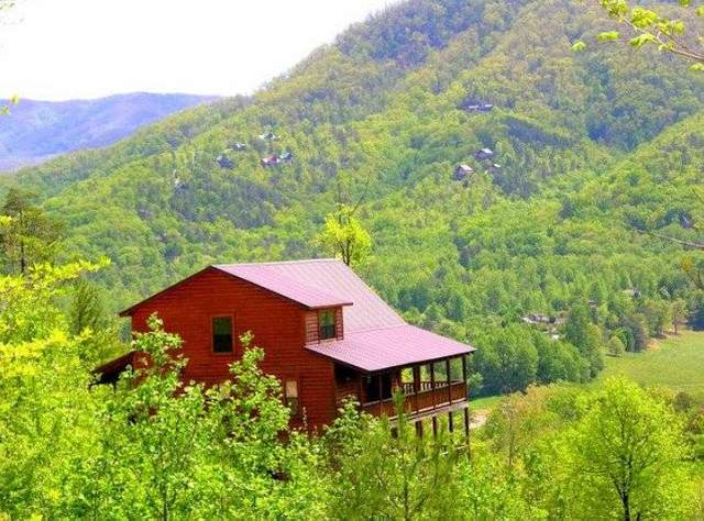 3820 Teaberry Ridge Ln, Sevierville, TN 37862 (#243360) :: Colonial Real Estate