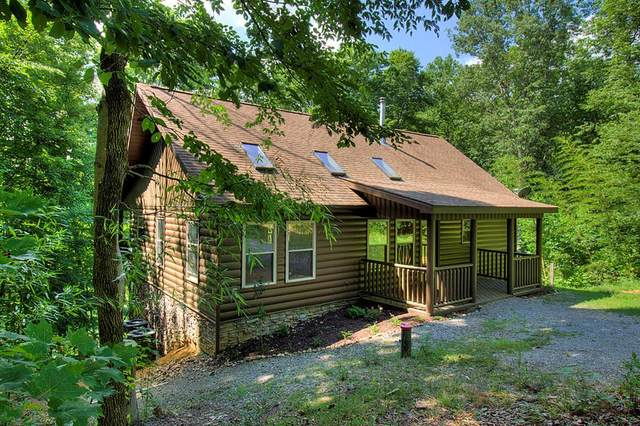 133 Dream Way, Sevierville, TN 37876 (#243384) :: Colonial Real Estate