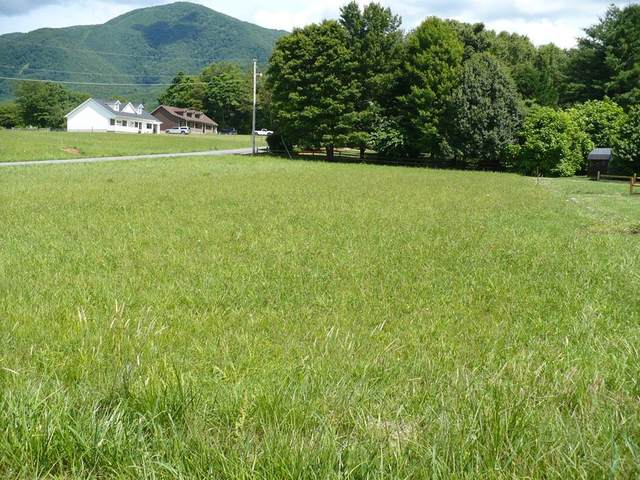 Lot #1 Shelby Way, Sevierville, TN 37862 (#243390) :: JET Real Estate