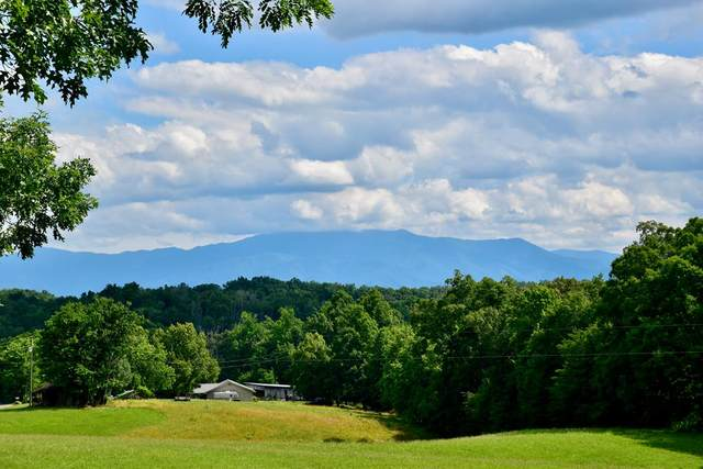 LOT 1 Sims Rd, Sevierville, TN 37876 (#243408) :: Colonial Real Estate