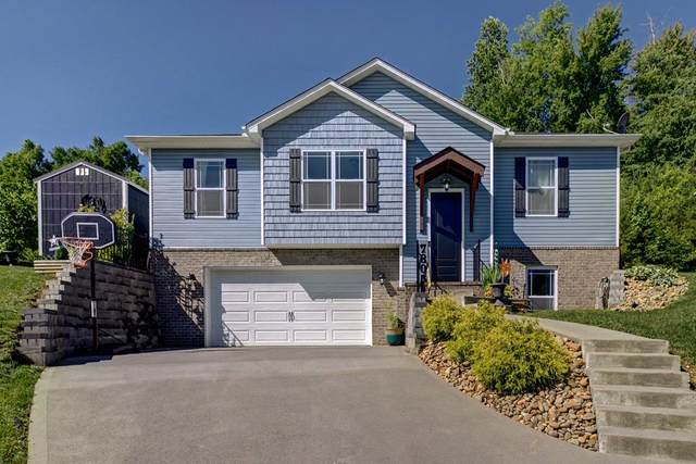 7805 Elkton Lane, Powell, TN 37849 (#243430) :: JET Real Estate