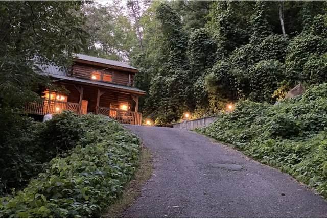 1119 Pine Mountain Road, Sevierville, TN 37862 (#243450) :: JET Real Estate