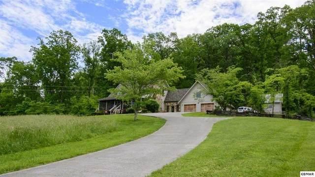 1150 Camellia Road, Newport, TN 37821 (#243457) :: Billy Houston Group