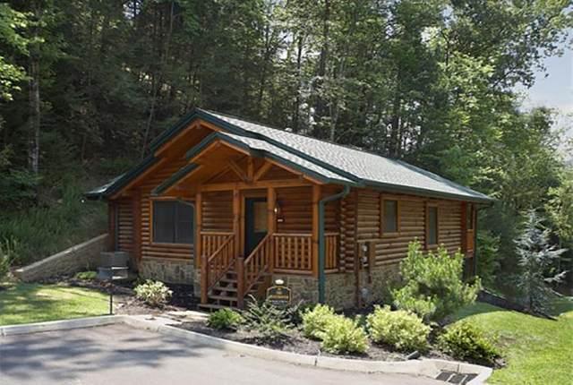 638 Gatlinburg Falls Way, Gatlinburg, TN 37738 (#243468) :: Colonial Real Estate