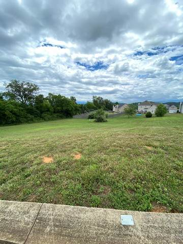 Lot 23 Vista Meadows Lane, Sevierville, TN 37876 (#243521) :: Century 21 Legacy