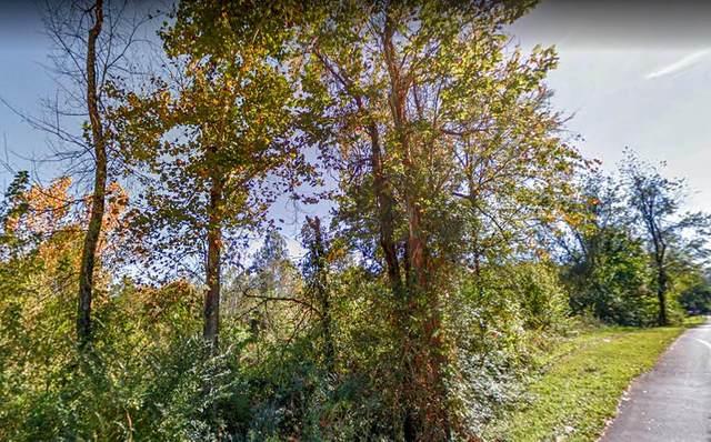 Island Blvd. Lot 114, Sevierville, TN 37876 (#243529) :: The Terrell-Drager Team