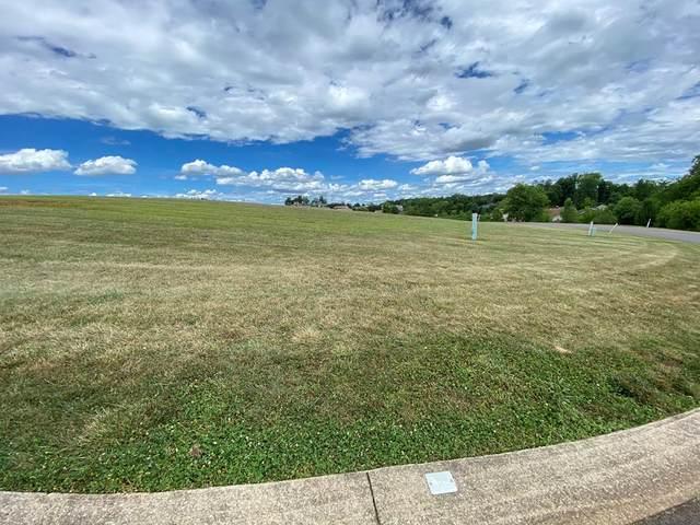 Lot 53 Vista Meadows Lane, Sevierville, TN 37876 (#243531) :: Century 21 Legacy