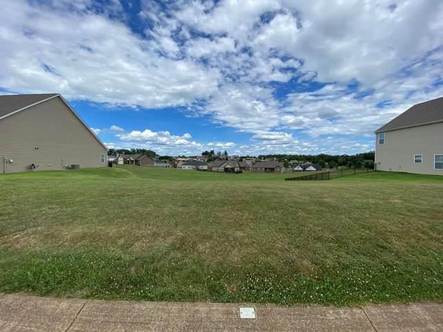 Lot 48 Vista Meadows Lane, Sevierville, TN 37876 (#243532) :: Century 21 Legacy