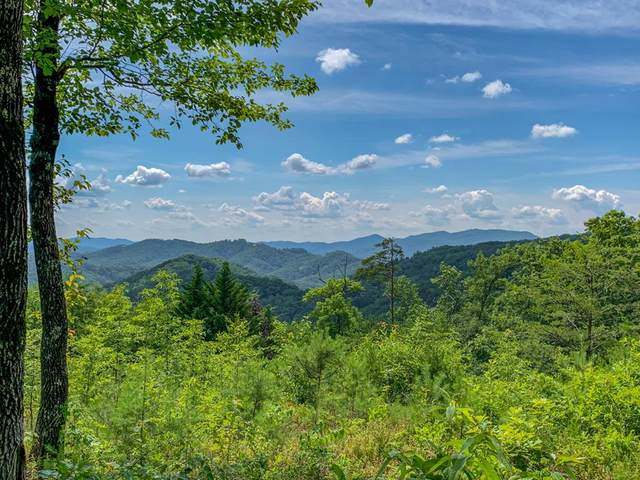 Lot 28E-R Covered Wagon Rd., Sevierville, TN 37862 (#243560) :: Billy Houston Group