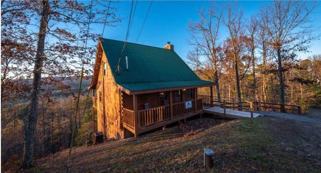 2924 Valley Springs Way, Sevierville, TN 37862 (#243575) :: Colonial Real Estate