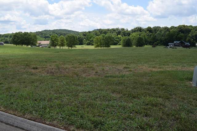 2006 River Mist Circle, New Market, TN 37820 (#243645) :: The Terrell-Drager Team
