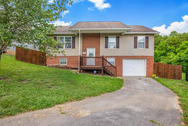 2307 Pond Court, Sevierville, TN 37876 (#243652) :: Colonial Real Estate
