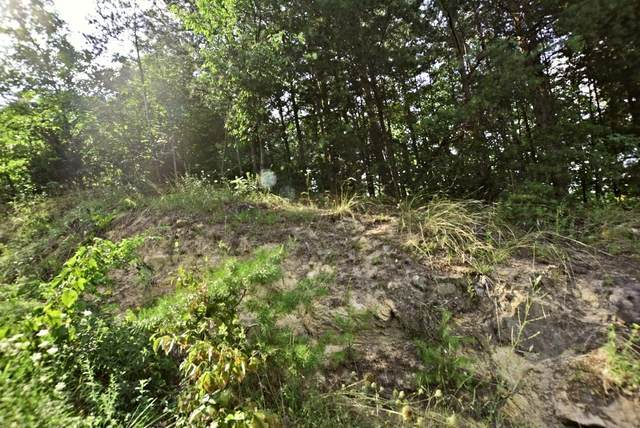 Lot 5 Windswept View Way, Sevierville, TN 37876 (#243716) :: Prime Mountain Properties