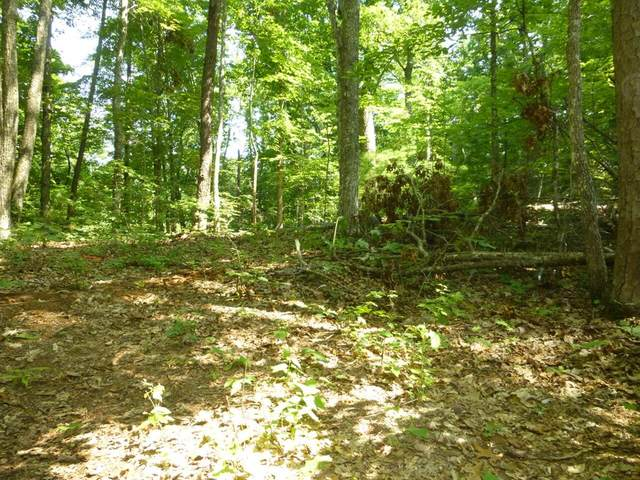 Lot 13B Singing Bird Way, Sevierville, TN 37876 (#243722) :: Colonial Real Estate