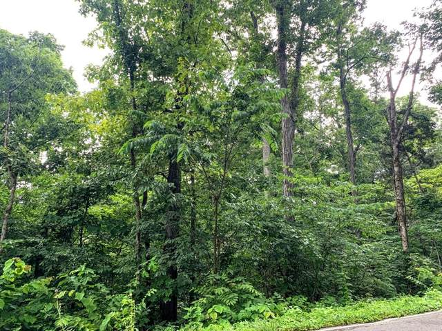 Lot 1R Derrick Rd, Sevierville, TN 37876 (#243724) :: Colonial Real Estate