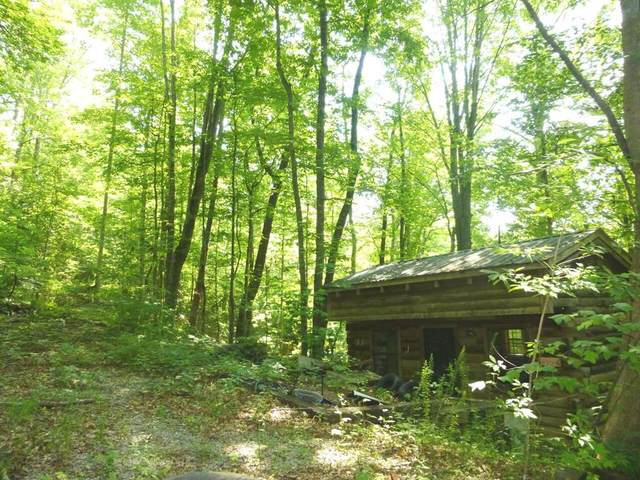 Lot 5 Hunter Hills Way, Sevierville, TN 37876 (#243725) :: Colonial Real Estate
