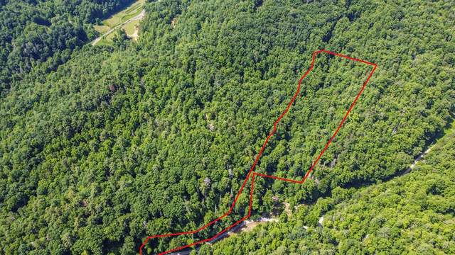 Reece Hollow Rd, Del Rio, TN 37729 (#243735) :: Suzanne Walls with eXp Realty