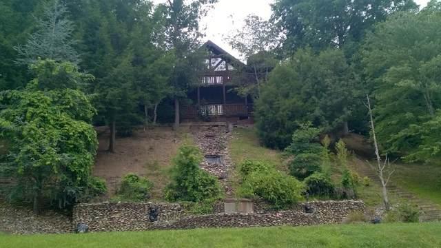 2120 Double Oaks Way Black Bear Hide, Sevierville, TN 37862 (#243771) :: JET Real Estate