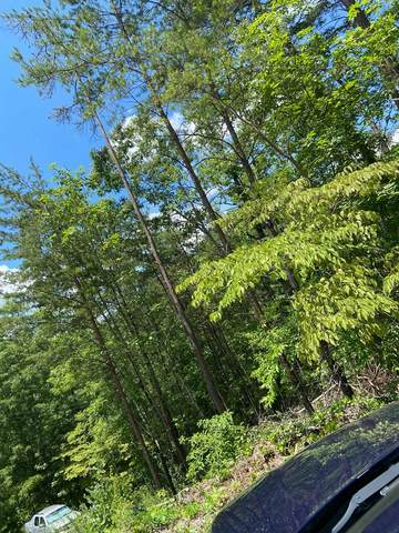 Lot 6 Eagle Pointe Way, Pigeon Forge, TN 37862 (#243777) :: Billy Houston Group