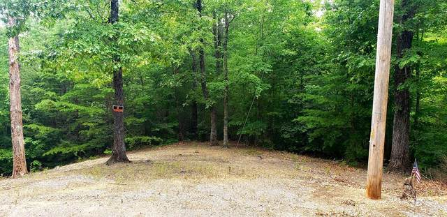 Lot 1702 Piney Drive, Sevierville, TN 37876 (#243781) :: The Terrell-Drager Team