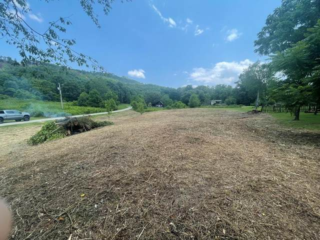 Lot 5R Little Cove Rd, Sevierville, TN 37862 (#243784) :: Billy Houston Group