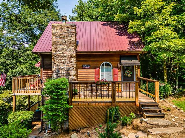 3514 Emerald Way, Sevierville, TN 37876 (#243807) :: Colonial Real Estate