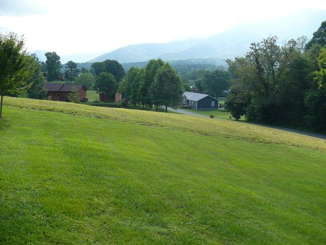 Lot #23 Roundtop Drive, Sevierville, TN 37862 (#243813) :: The Terrell-Drager Team