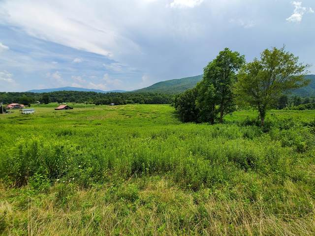 7 Acres Holders Grove, Cosby, TN 37722 (#243828) :: Suzanne Walls with eXp Realty