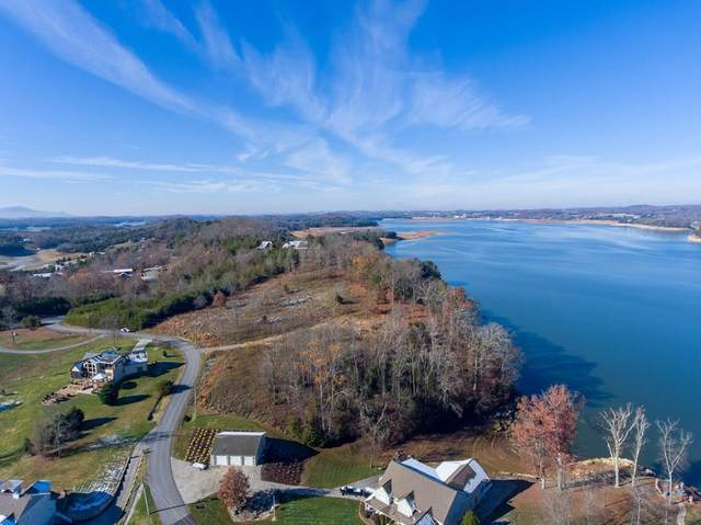 Parcel 37.03 Island View Rd, Sevierville, TN 37876 (#243833) :: Billy Houston Group