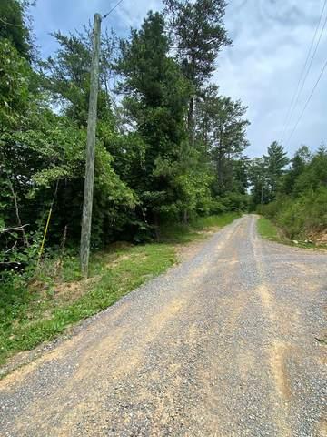 Azalea Trail, Sevierville, TN 37876 (#243875) :: Billy Houston Group