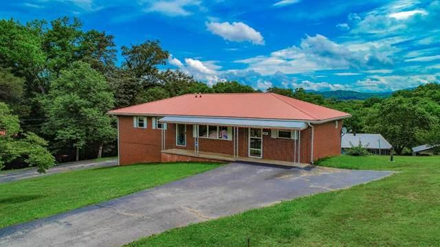520 Summit Ridge Rd, Newport, TN 37821 (#243881) :: Billy Houston Group