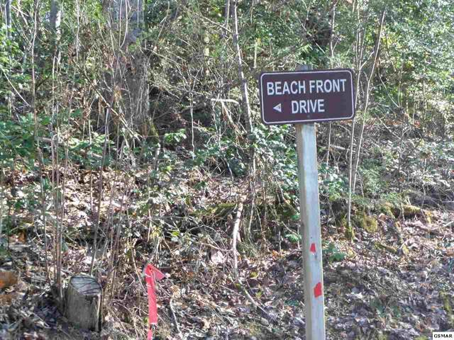 Lot 1147 Beach Front Drive, Sevierville, TN 37876 (#243921) :: Colonial Real Estate