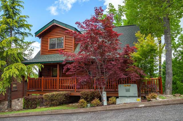 2025 Bear Creek Way Heaven On Earth, Sevierville, TN 37862 (#243930) :: The Terrell-Drager Team