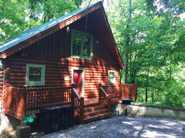 524 Wildwood Forest Way, Sevierville, TN 37876 (#243940) :: Prime Mountain Properties