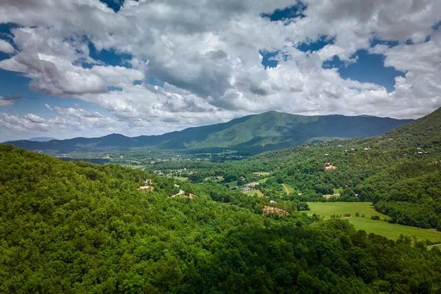 Lot 15 Fawn Hollow Trl, Townsend, TN 37803 (#243950) :: The Terrell-Drager Team