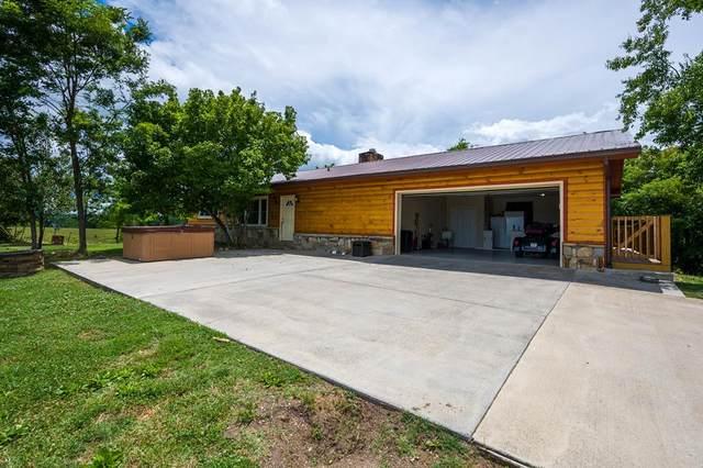 2829 Indian Creek Rd, Dandridge, TN 37725 (#243953) :: Colonial Real Estate