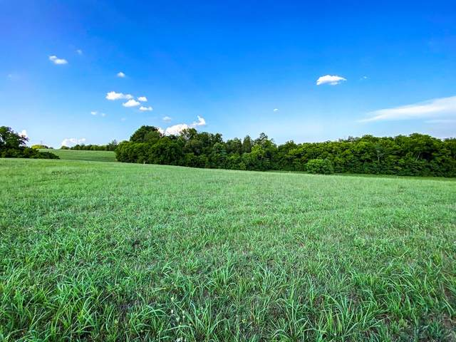 Lot 14 Forgety Road, Jefferson City, TN 37760 (#243992) :: The Terrell-Drager Team