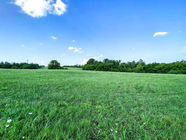 Lot 15 Forgety Road, Jefferson City, TN 37760 (#243993) :: The Terrell-Drager Team