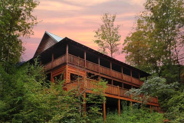 2806 Turkey Court Off The Clock, Sevierville, TN 37876 (#244000) :: The Terrell-Drager Team