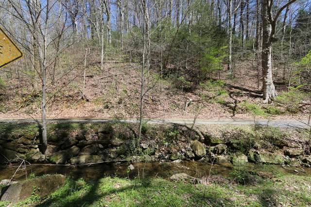 LOT 5 Cabin Creek Way, Sevierville, TN 37862 (#244014) :: The Terrell-Drager Team
