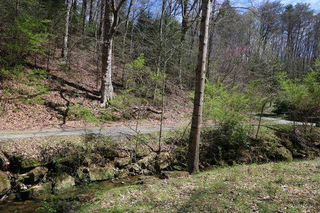 LOT 6 Cabin Creek Way, Sevierville, TN 37862 (#244015) :: The Terrell-Drager Team
