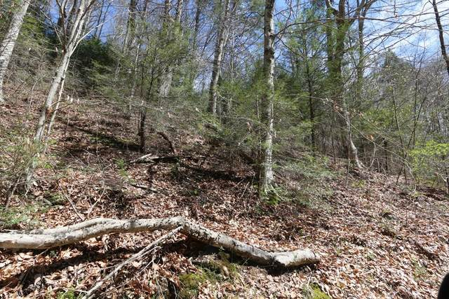 LOT 7 Cabin Creek Way, Sevierville, TN 37862 (#244016) :: The Terrell-Drager Team