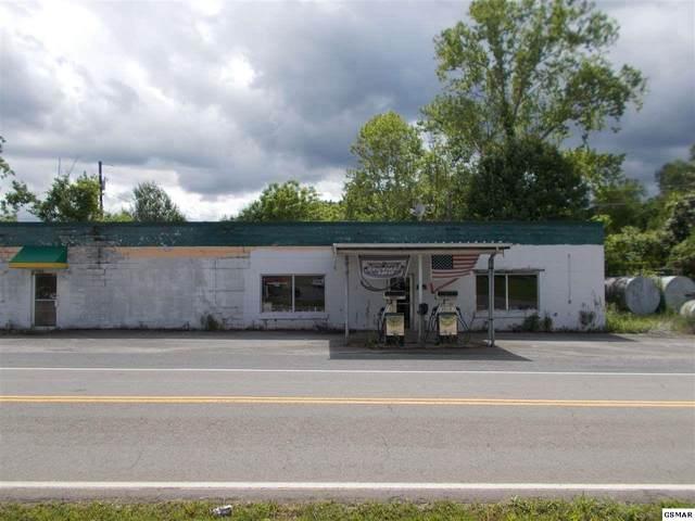 785 Highway 107 S, Del Rio, TN 37727 (#244028) :: Billy Houston Group
