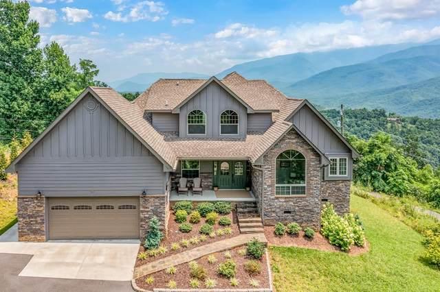 904 Pine Cone Way, Gatlinburg, TN 37738 (#244045) :: Colonial Real Estate