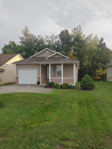 1328 William Holt Blvd, Sevierville, TN 37862 (#244065) :: Colonial Real Estate