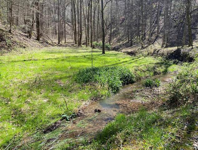 Valley Springs Way, Sevierville, TN 37862 (#244074) :: Prime Mountain Properties