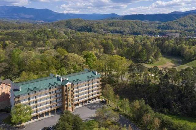 818 Golf View Blvd Bear Den, Pigeon Forge, TN 37863 (#244095) :: Colonial Real Estate